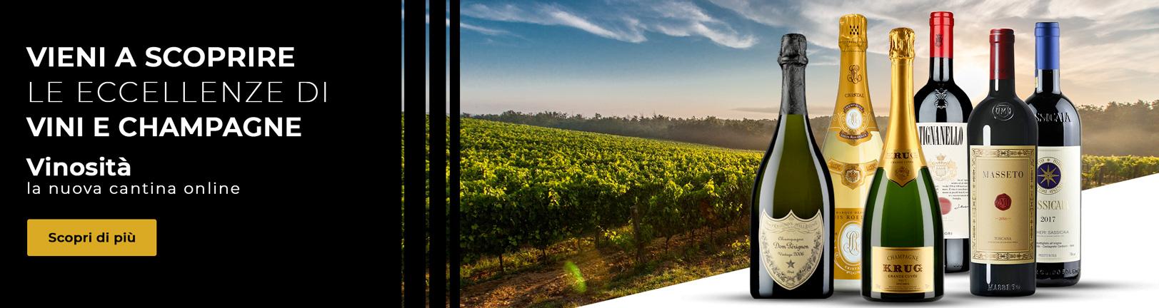 Vinosità - Selezione Vini e Champagne