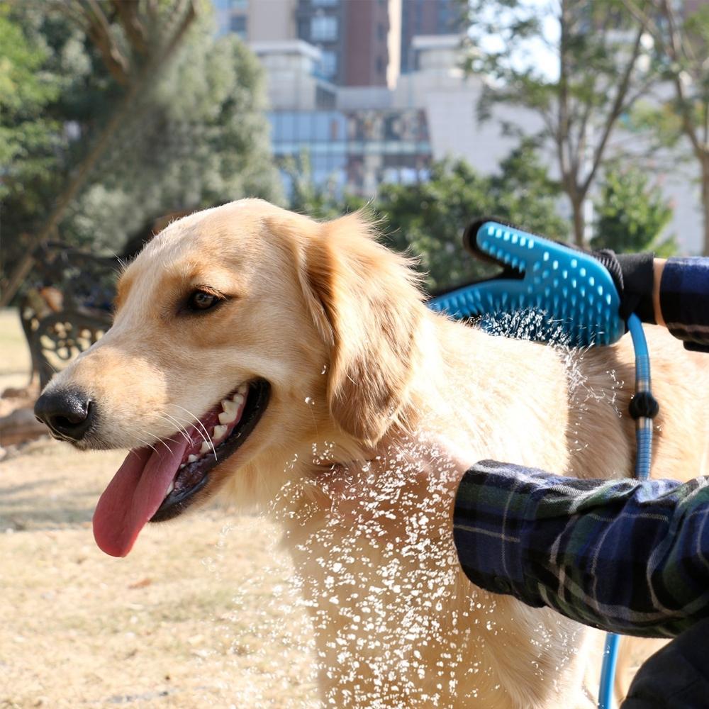 pet-touch-shower